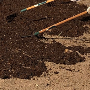 Adding compost can improve the structure and fertility of most garden soils.